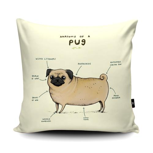The Home Furnishings Company Anatomy of a Pug Floor Cushion Giant Size: 3 feet x 3 feet - p,us scatter cushions