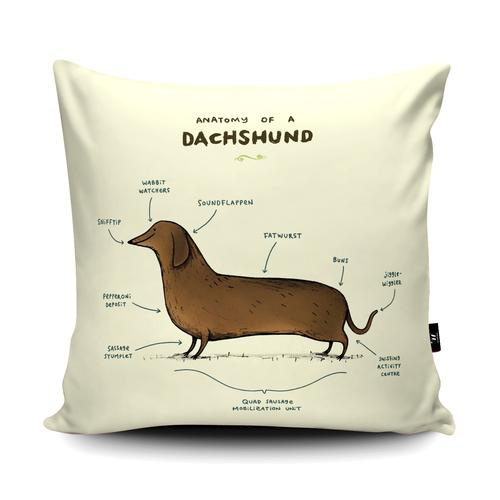 The Home Furnishings Company Anatomy of a Dachshund Floor Cushions Giant Size: 3 feet x 3 feet - plus scatter cushions