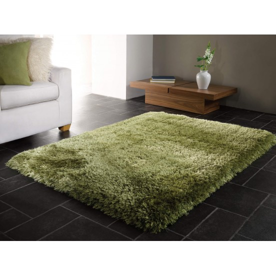 The Home Furnishings Company Sage Green Super Luxurious Silky Shaggy Rug 120x160cms