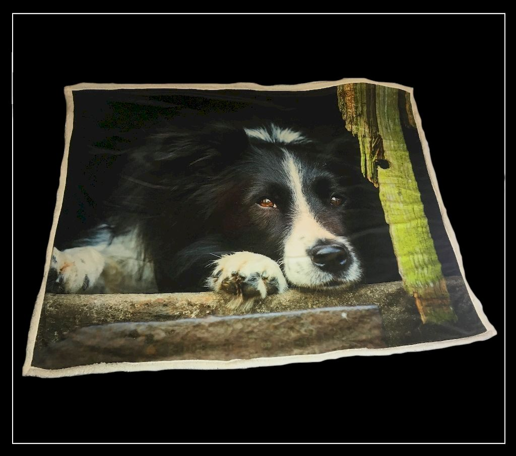 The Home Furnishings Company Collie Throw 130x150cms  by Country Matters